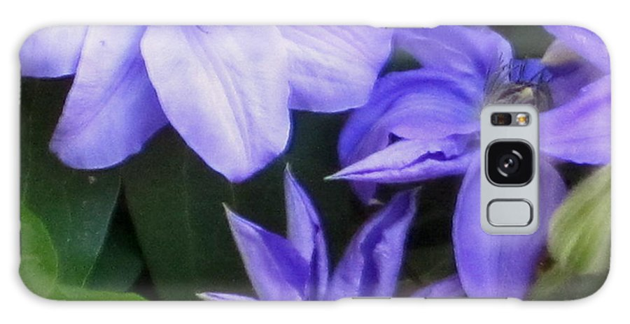 Flowers Galaxy S8 Case featuring the photograph The Color Purple by Rabiah Seminole
