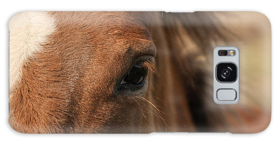 Horse Galaxy S8 Case featuring the photograph The Eye by Jacki Smoldon