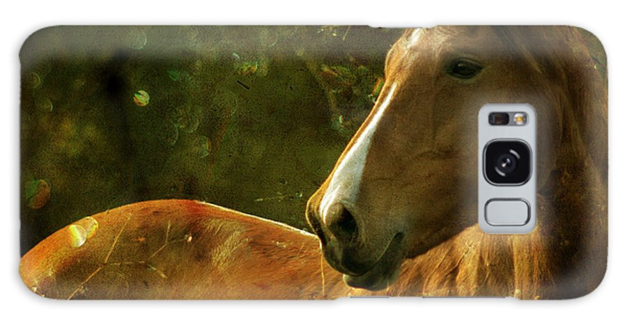 Horse Galaxy S8 Case featuring the photograph The Fairytale Horse by Angel Ciesniarska
