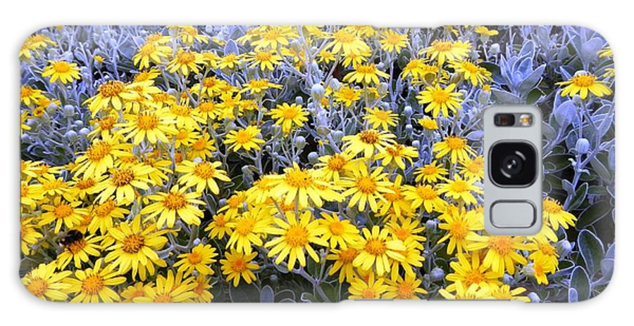Flowers Galaxy S8 Case featuring the photograph The Field Of Wonder by Loreta Mickiene