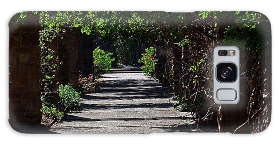 Landscape Galaxy S8 Case featuring the photograph The Garden Pathway 2 by Earl Johnson