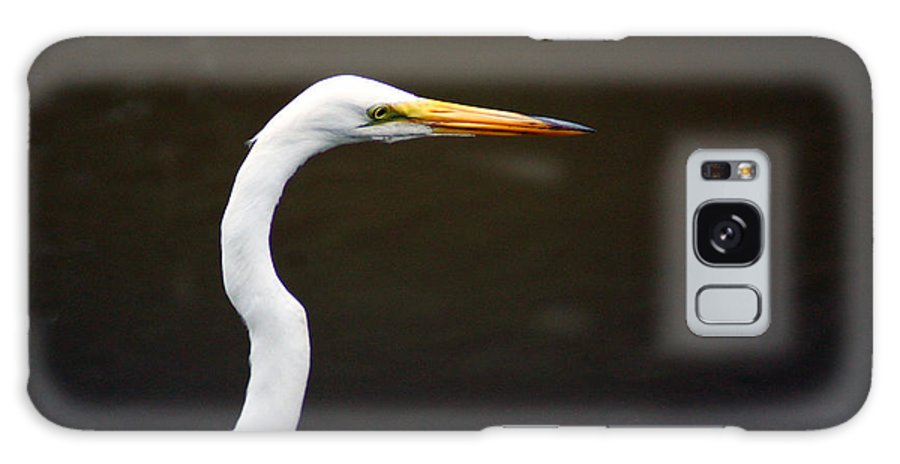 The Great Egret Galaxy S8 Case featuring the photograph The Great Egret Head Shot by Kim Pate
