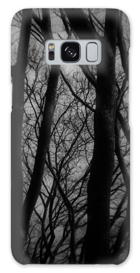 Trees Galaxy S8 Case featuring the photograph The Haunting by Kathleen Odenthal