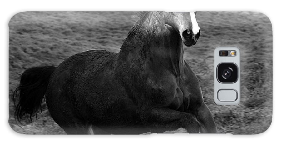 Horse Galaxy S8 Case featuring the photograph The Horse by Angel Ciesniarska