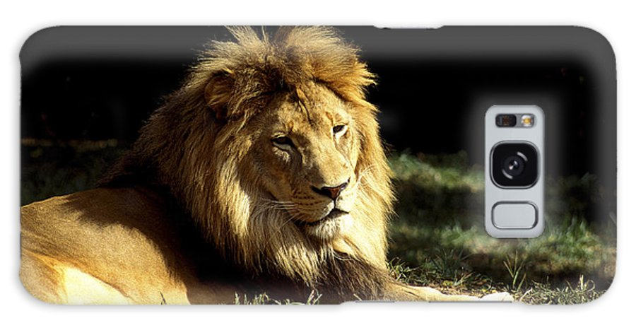 Male Lion Galaxy S8 Case featuring the photograph The King by Paul W Faust - Impressions of Light