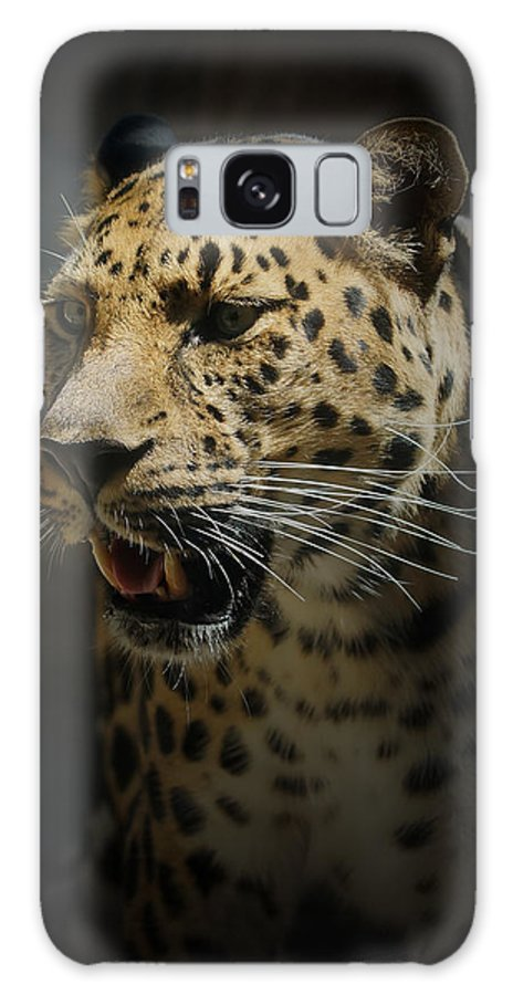Animals Galaxy S8 Case featuring the photograph The Leopard by Ernie Echols