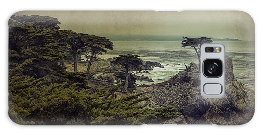 Lone Cypress Galaxy S8 Case featuring the photograph The Lone Cypress by Angela Stanton