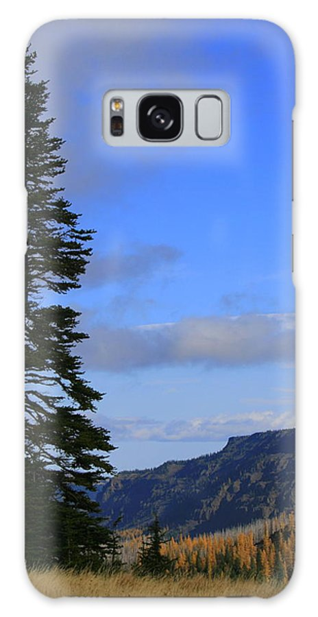 Tree Galaxy S8 Case featuring the photograph The Lone Tree by JoJo Photography