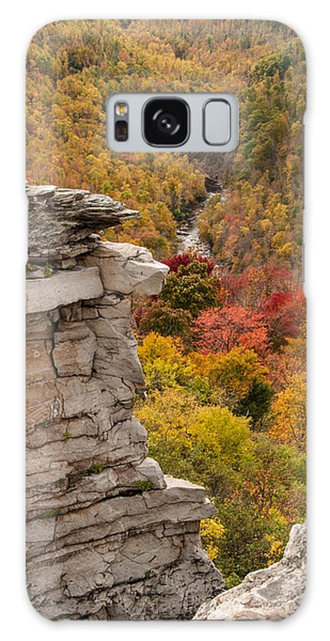 Foliage Galaxy S8 Case featuring the photograph The Long Fall by Jim Southwell