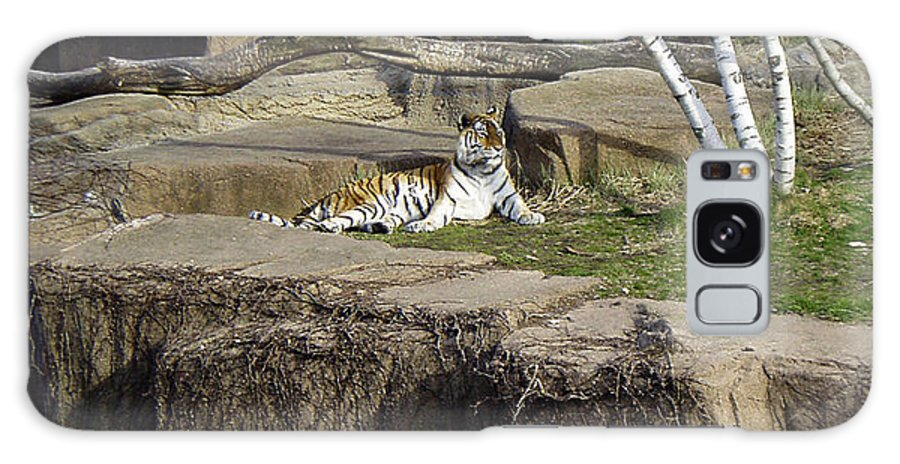 Tiger Galaxy S8 Case featuring the photograph The Lounging Tiger 2 by Verana Stark