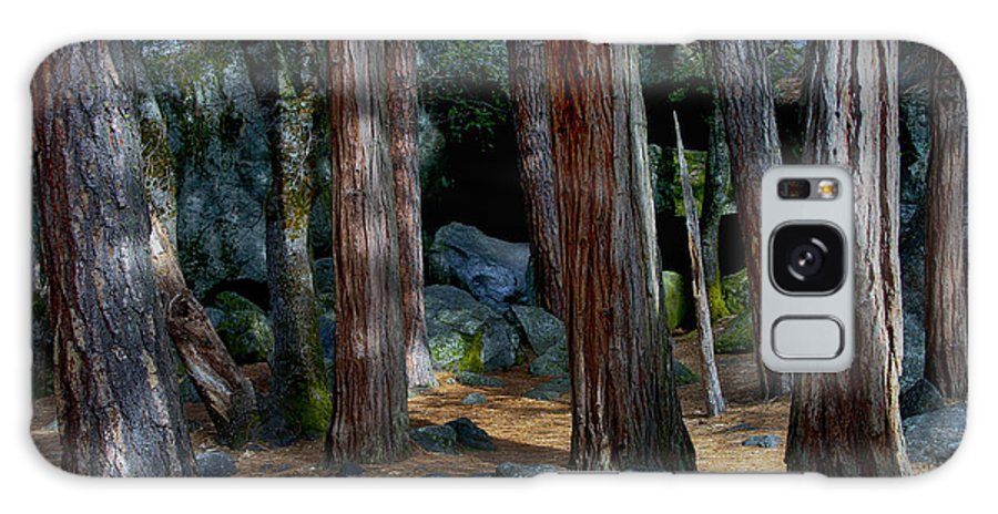 Tree Galaxy S8 Case featuring the photograph The Meeting Place by Robert Woodward