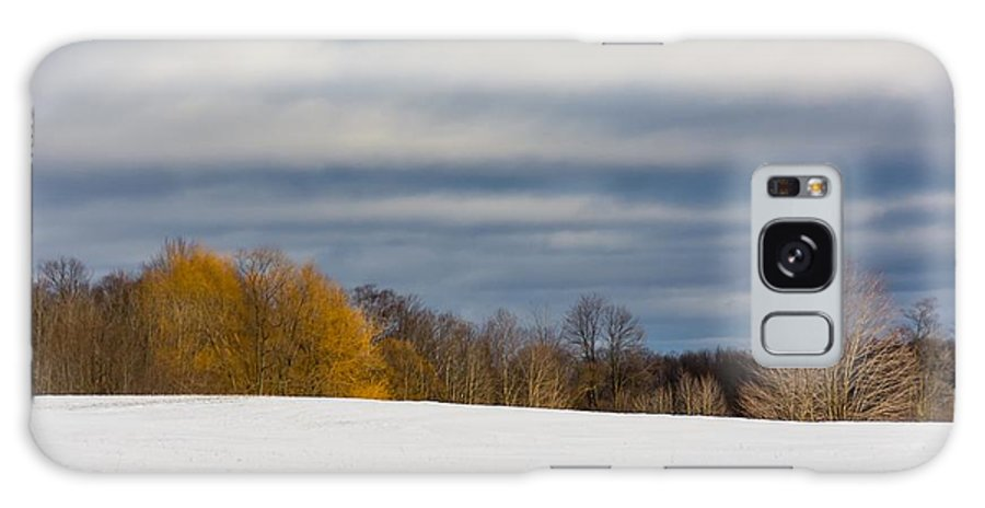 D7100 Galaxy S8 Case featuring the photograph The Optimist's Edge Of Winter by Steve Harrington