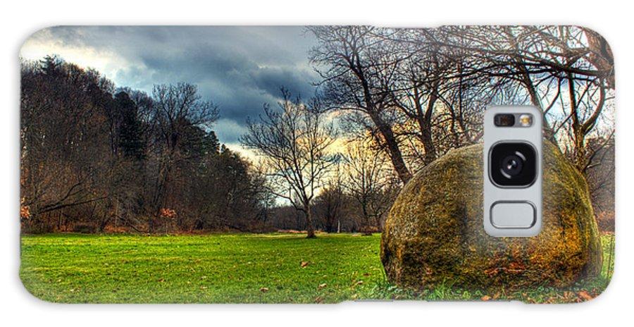 Ellison Park Galaxy S8 Case featuring the photograph The Park by Tim Buisman