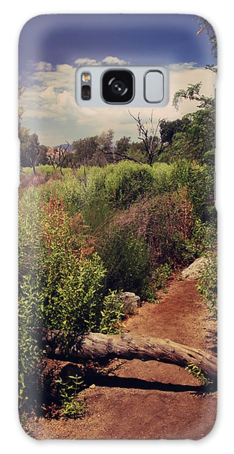 Big Morongo Canyon Preserve Galaxy S8 Case featuring the photograph The Past Is Gone by Laurie Search