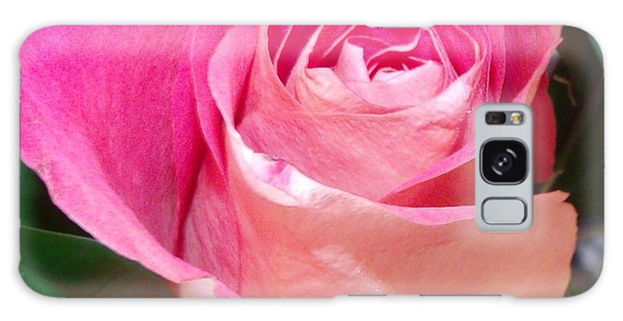 Rose Galaxy S8 Case featuring the photograph The Pink Rose by Gail Matthews