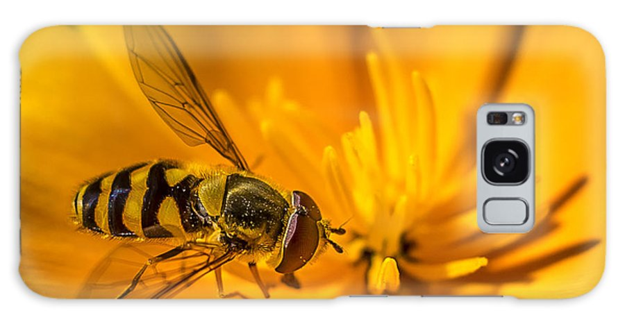 Trollius Galaxy S8 Case featuring the photograph The Pollen Hunter by Gerald Murray Photography
