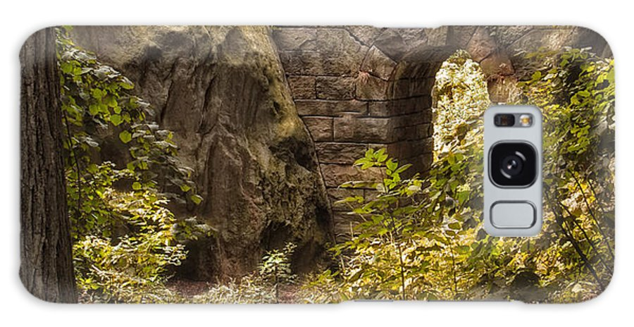 Nature Galaxy S8 Case featuring the photograph The Ramble Stone Arch by Jessica Jenney