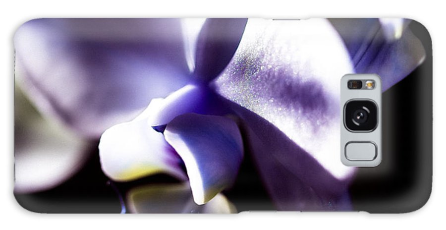 Lavender Orchid Galaxy S8 Case featuring the photograph The Rising Light by Sheree Lauth