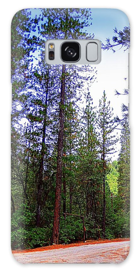 Acrylic Prints Galaxy S8 Case featuring the photograph The Road Less Traveled by Bobbee Rickard