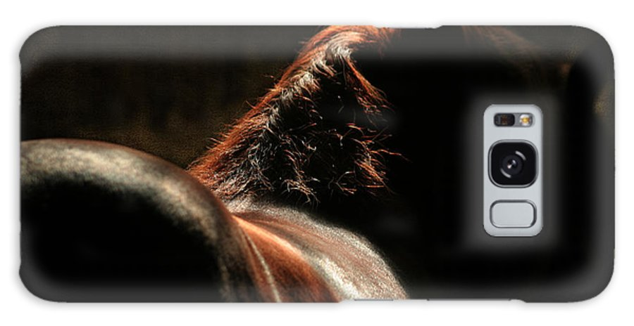 Horse Galaxy S8 Case featuring the photograph The Silhouette by Angel Ciesniarska