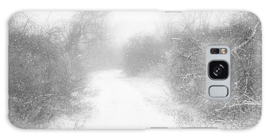Snow Galaxy S8 Case featuring the photograph The Snowy Winter Path by Gary Heller