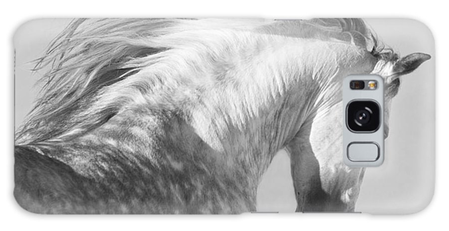 Horse Galaxy S8 Case featuring the photograph The Spanish Stallion Tosses His Head by Carol Walker