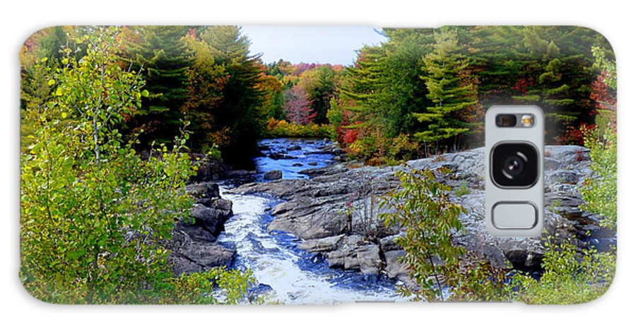 Nature Galaxy S8 Case featuring the photograph The View From The Bridge by Rennae Christman