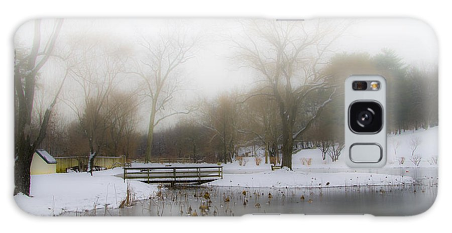Willows Galaxy S8 Case featuring the photograph The Willows In Winter - Newtown Square Pa by Bill Cannon