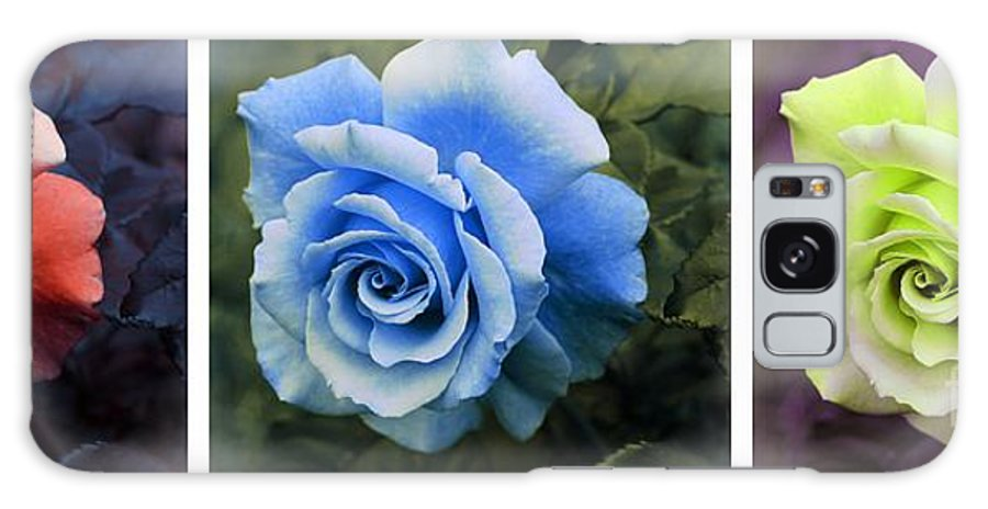 There Were Roses Triptych Galaxy S8 Case featuring the photograph There Were Roses Triptych 2 by Barbara Griffin