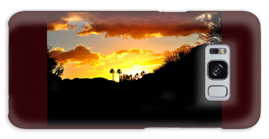 Tree Galaxy S8 Case featuring the photograph There's Gold In Them Thar Hills by Jay Milo