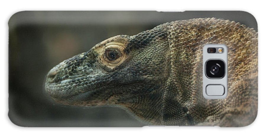 Lizard Galaxy S8 Case featuring the photograph This Is My Best Side by Rich Priest