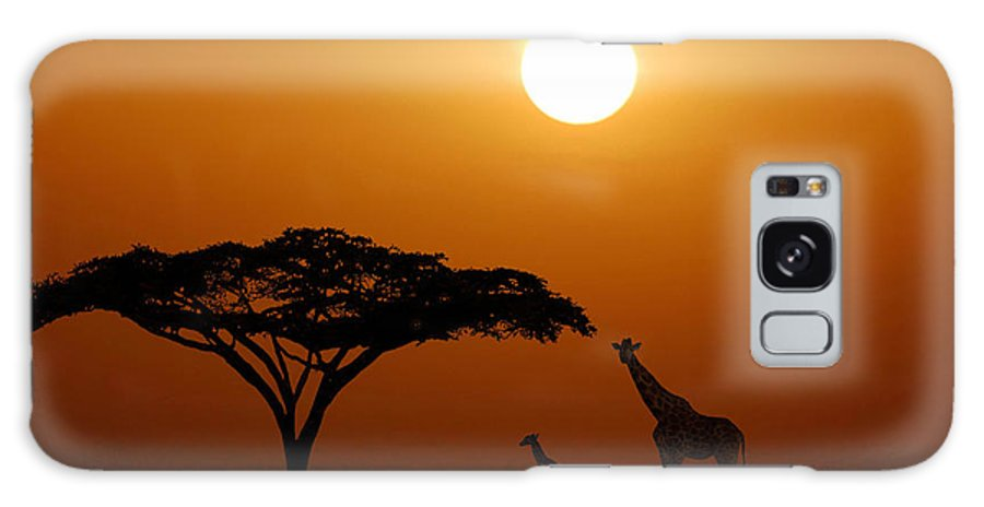 Kenya Galaxy S8 Case featuring the photograph This Little Light Of Mine by Jim Southwell