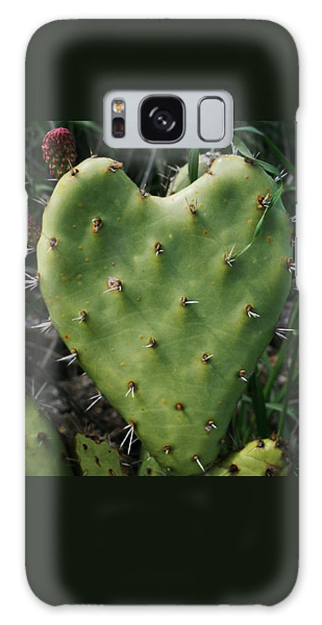 Thorny Heart Galaxy S8 Case featuring the photograph Thorny Heart by Ellen Henneke