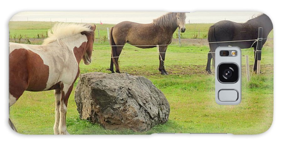 Horses Galaxy S8 Case featuring the photograph There Were Three Horsegirls And One Big Gray Stone by Hilde Widerberg