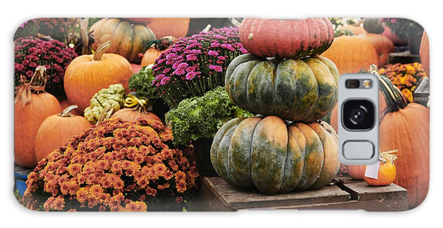 Still Life Of Three Pumpkins High Surrounded With Pumpkins And Colorful Mums. Galaxy S8 Case featuring the photograph Three Pumpkins And More by Elaine Walsh
