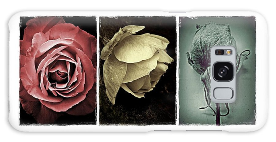 Rose Galaxy S8 Case featuring the photograph Three Roses by Patricia Strand