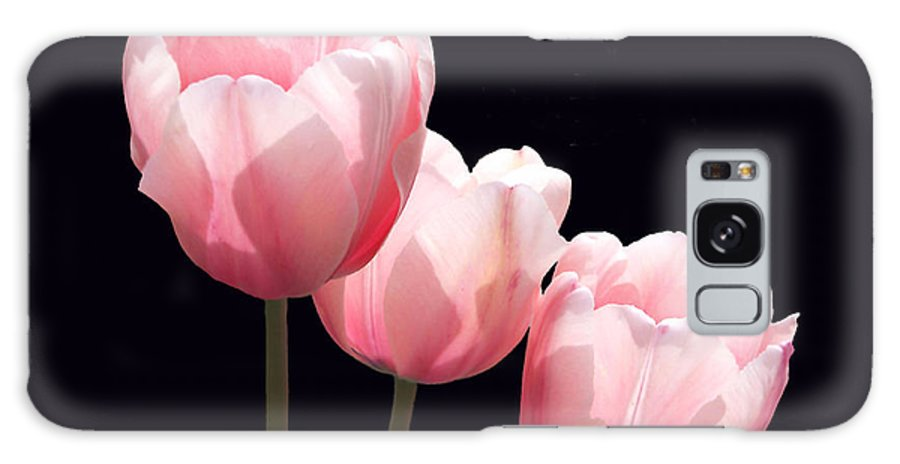 Floral Galaxy S8 Case featuring the photograph Three Two Lips by Debra Orlean