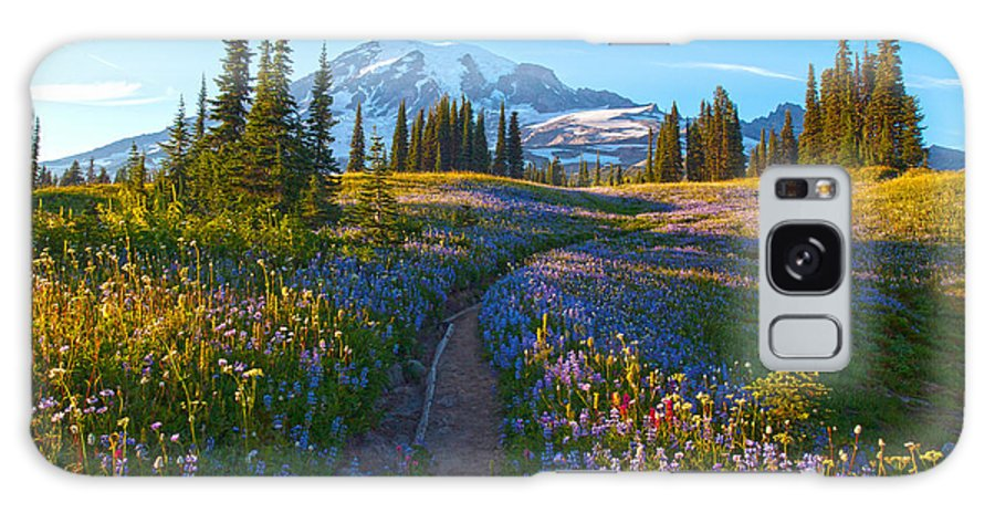Rainier Galaxy S8 Case featuring the photograph Through The Golden Meadows by Mike Reid
