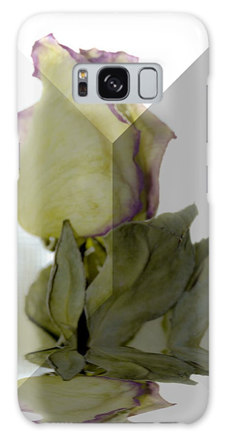 Rose Galaxy S8 Case featuring the photograph Through The Prism A Rose by Marie Jamieson