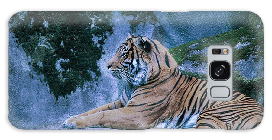 Tiger Galaxy S8 Case featuring the photograph Tiger by Rich Priest