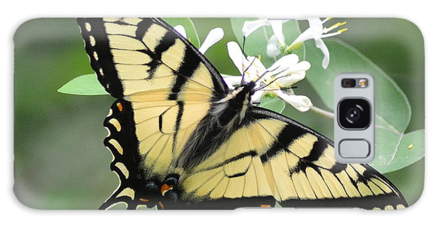 Wildlife Galaxy S8 Case featuring the photograph Tiger Swallowtail by Lisa Jaworski