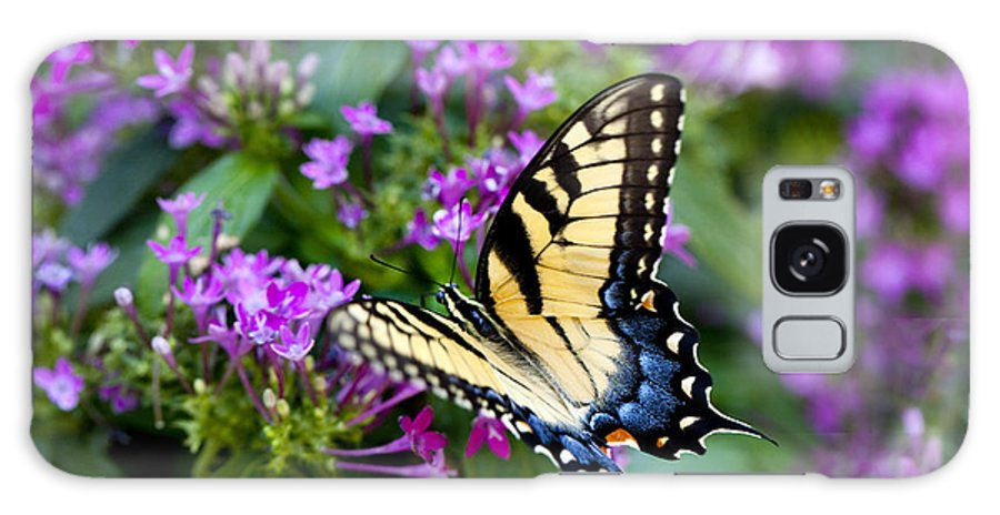 Butterfly Galaxy S8 Case featuring the photograph Tiger Swallowtail by Robert Camp