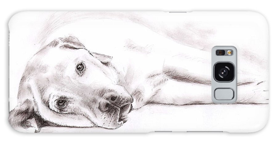 Dog Galaxy Case featuring the drawing Tired Labrador by Nicole Zeug