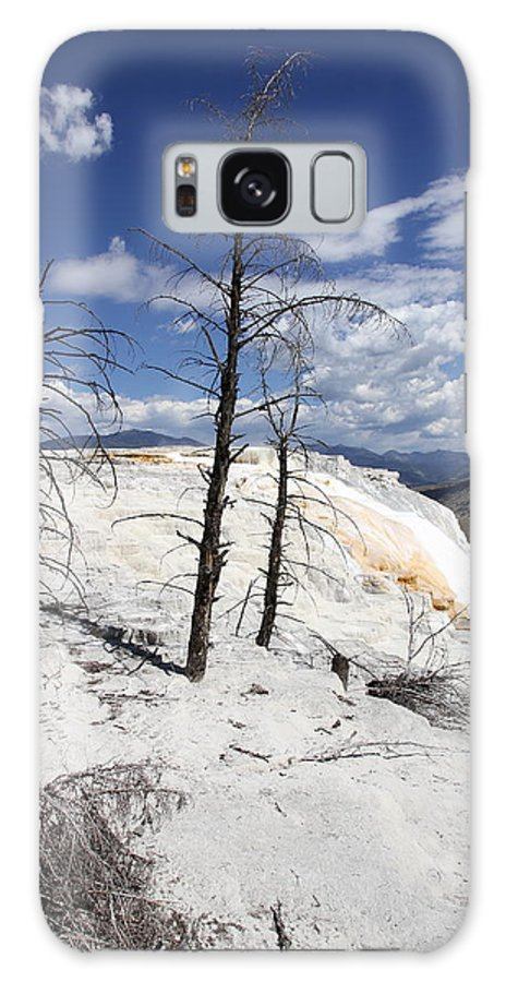Mammoth Hot Spring Galaxy S8 Case featuring the photograph Travertine Terrace And Dead Trees by Christiane Schulze Art And Photography