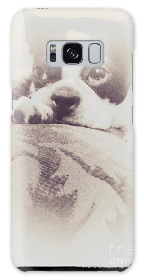 Boston Terrier Galaxy S8 Case featuring the photograph Treasured Friend by Heather Taylor