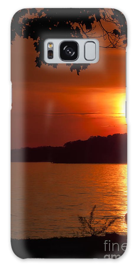 Sundown Galaxy S8 Case featuring the photograph Tree At Sundown by Tony Reilly