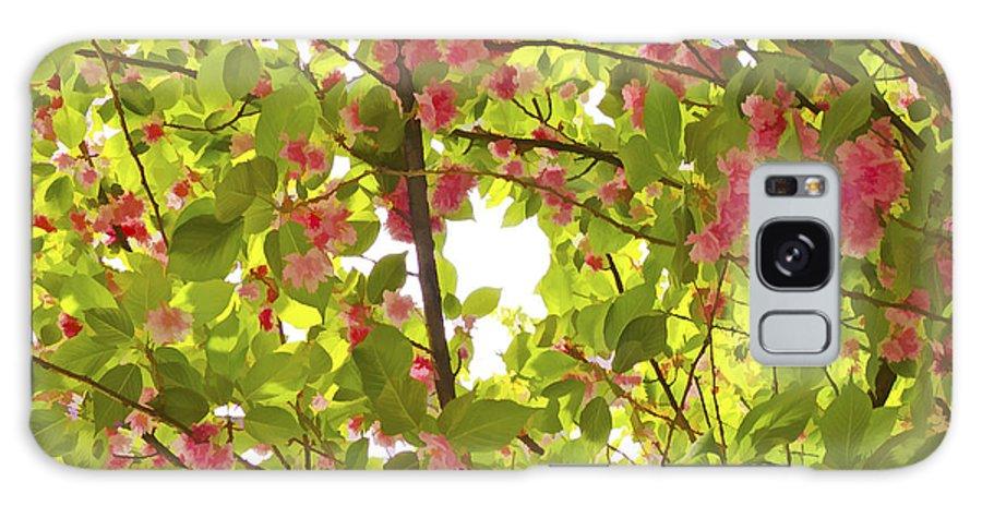 Tree Galaxy S8 Case featuring the photograph Tree Blossom 1 by Joseph Hedaya