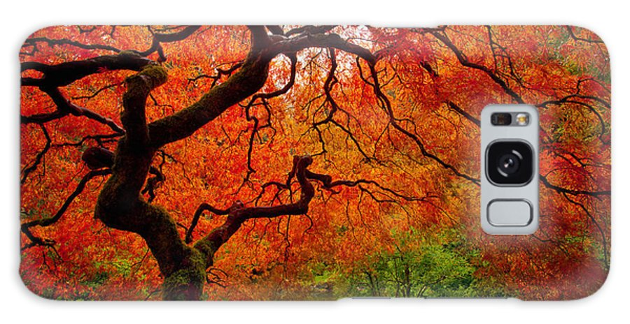 Portland Galaxy S8 Case featuring the photograph Tree Fire by Darren White