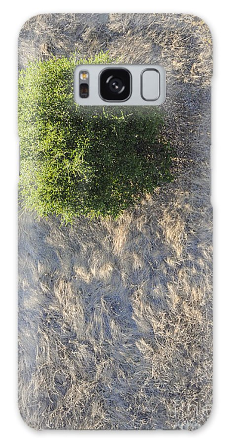 Napa Valley California Tree Trees Grass Grasses Texture Textures Galaxy S8 Case featuring the photograph Tree In Grass From Balloon by Bob Phillips