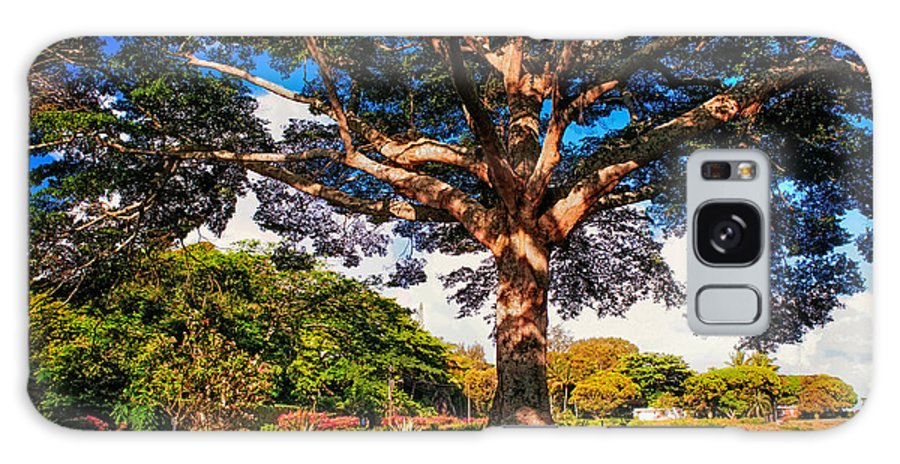 Maurituis Galaxy S8 Case featuring the photograph Tree Of Joy. Mauritius by Jenny Rainbow